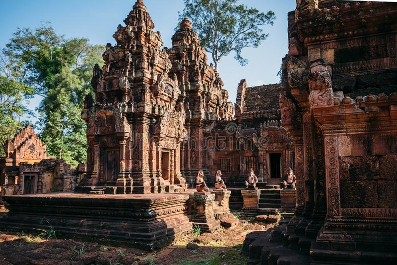 Виски Angkor Wat в Камбодже, животиках Prohm, Siem Reap стоковое фото rf