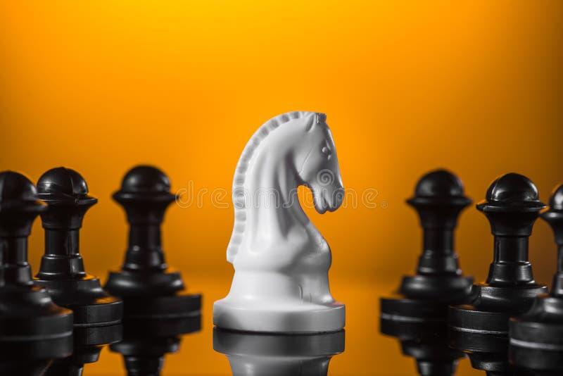 Внимание на шахматной фигуре рыцаря стоковые изображения