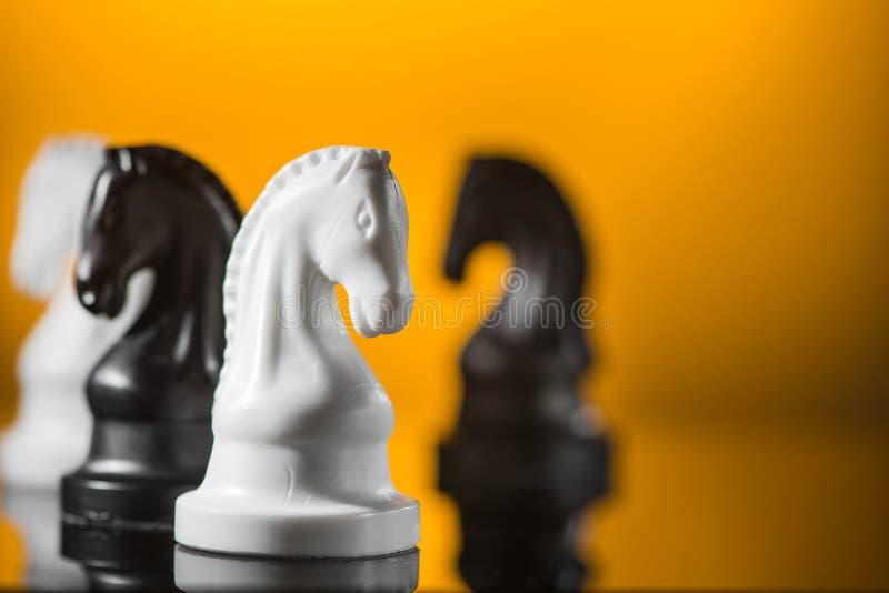 Внимание на шахматной фигуре рыцаря стоковое фото rf