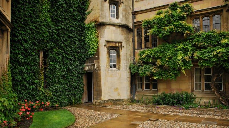 Вход к зданию кампуса на Кембриджском университете стоковое изображение rf