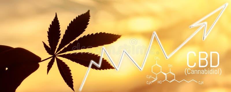 Выгоды индустрии конопли в фондовой бирже Огромные выгоды от марихуаны Конопля cannabidiol формулы CBD иллюстрация вектора
