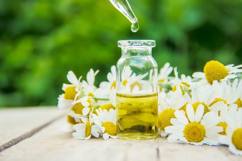 Выдержка стоцвета в малой бутылке Селективный фокус стоковые изображения
