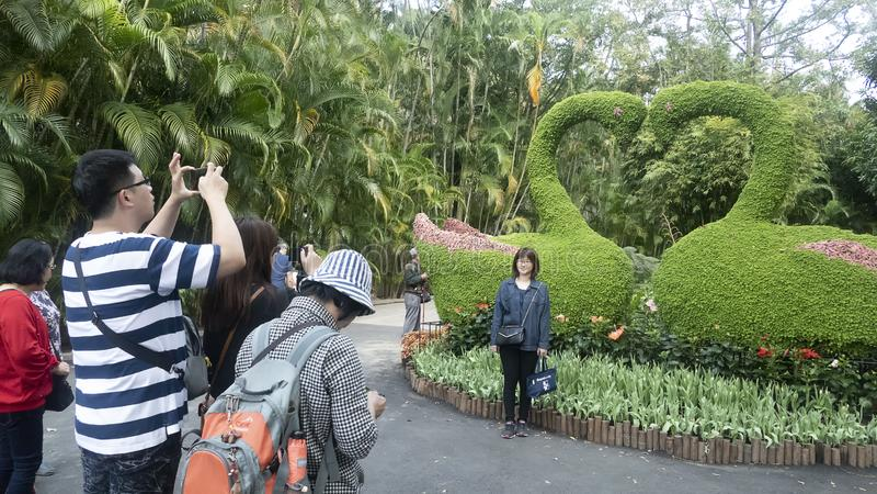 2019 выставка тюльпана официальной резиденции Shilin, Тайбэй, Тайвань стоковые фотографии rf
