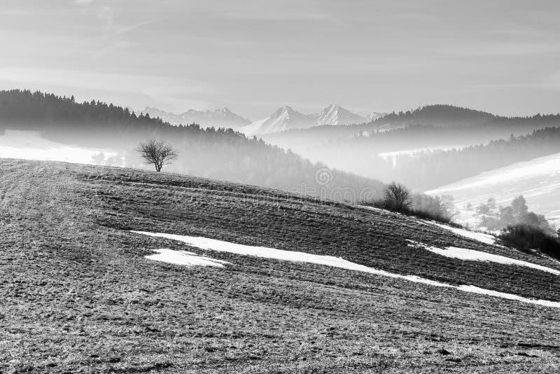 Высота Tatras стоковые изображения rf