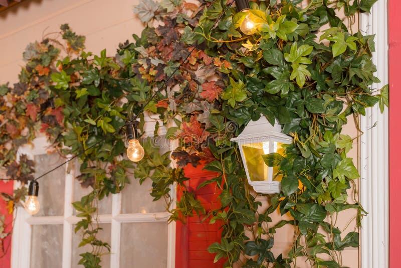 В оболочке плющом отверстие окна дома подъем окна заводов живой природы домашний Ретро фонарик в своде диких виноградин, строя с стоковые фотографии rf