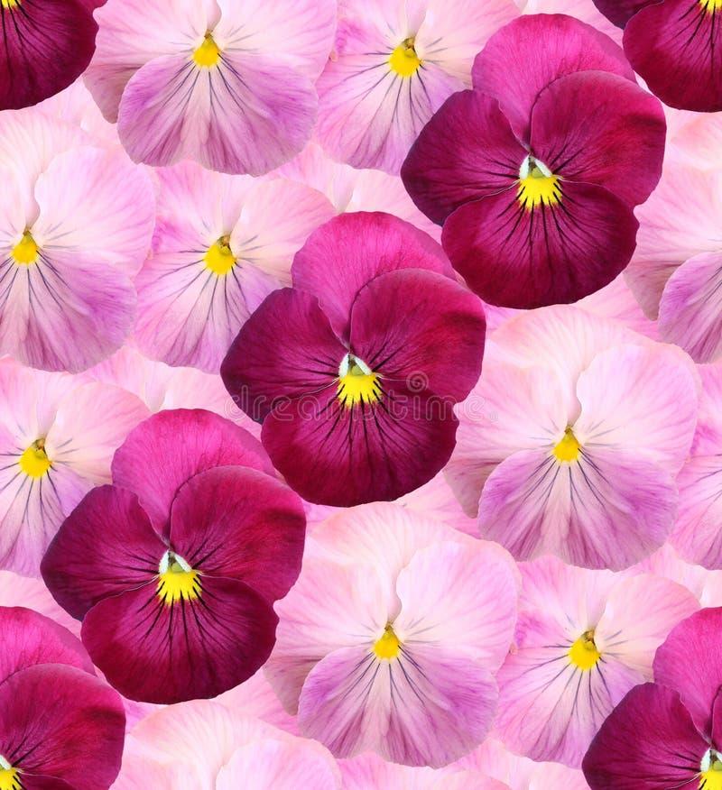 Ð'eautiful floral background of violets stock images
