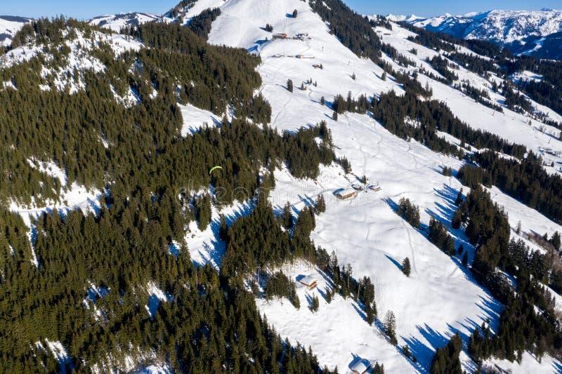 Воздушная съемка летания параплана над лесом горы снега стоковое фото rf