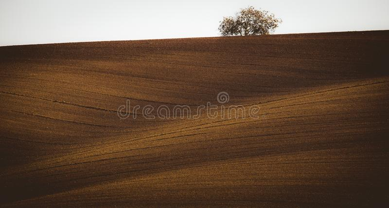 Волнистые поля осени в Moravian Тоскане, чехии стоковые фотографии rf