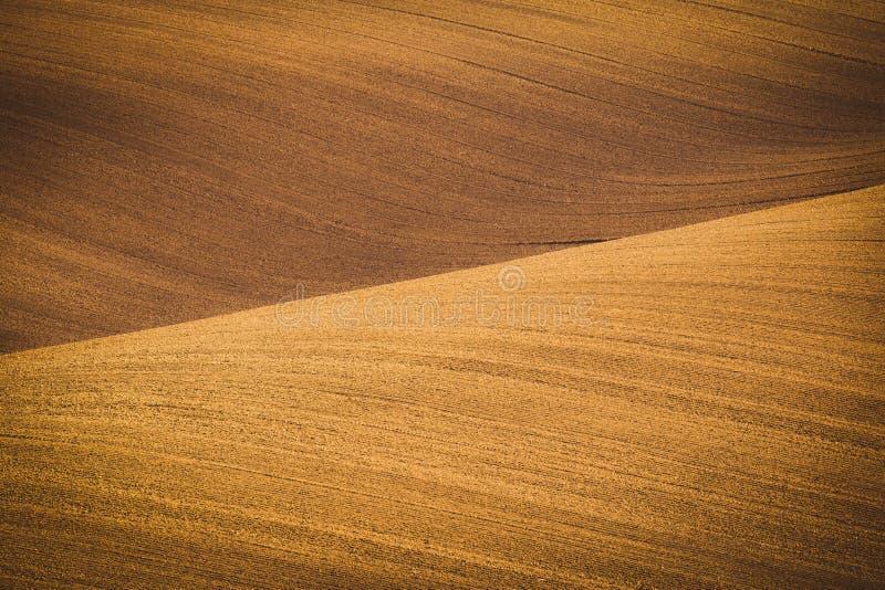 Волнистые поля осени в Moravian Тоскане, чехии стоковое фото rf