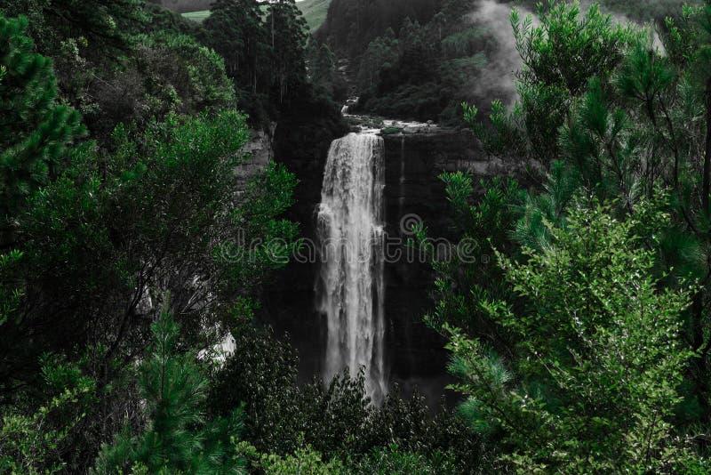 Волшебный спрятанный водопад на туманном утре стоковая фотография rf