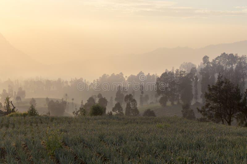 Восход солнца в держателе Bromo lawang cemoro близко стоковые изображения rf