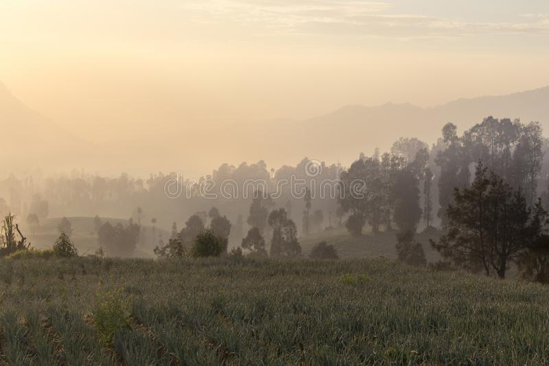 Восход солнца в держателе Bromo lawang cemoro близко стоковая фотография