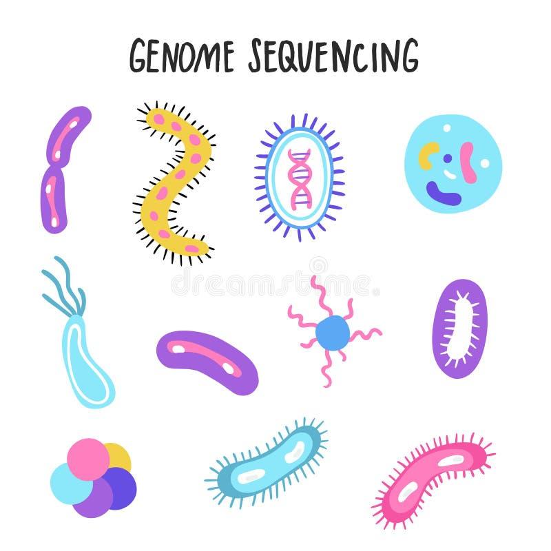 Геном руки вычерченный sequencing иллюстрация Человеческие символы технологии исследования дна Проект генома человека иллюстрация вектора