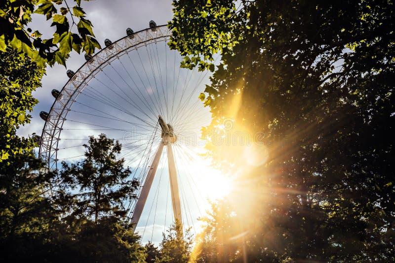 Глаз на заходе солнца - Лондон Лондона, Великобритания стоковые фото