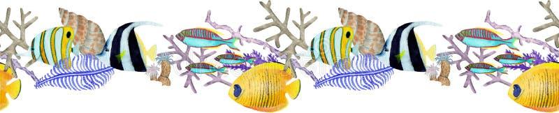 Граница руки вычерченная seemless в элементе мира моря акварели естественном Коралловый риф на белой предпосылке иллюстрация штока