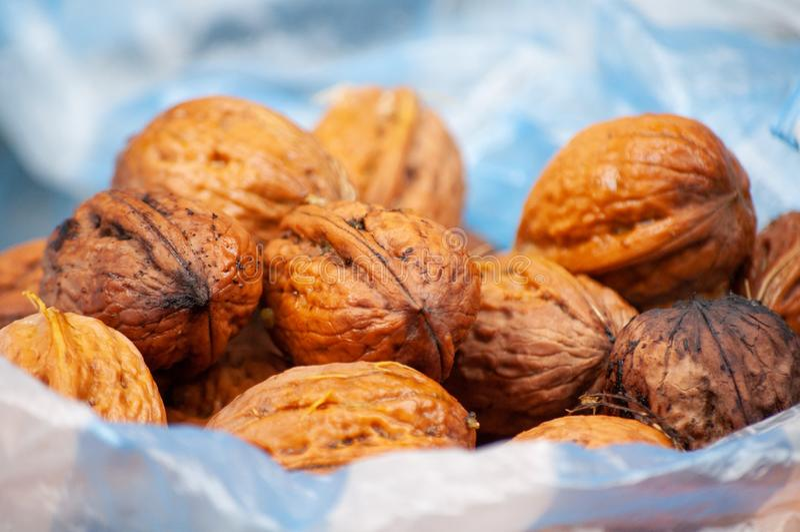 грецкие орехи группы стоковые изображения rf