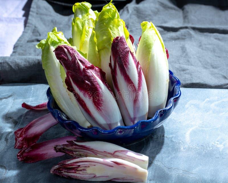 Группа в составе свежие зеленые бельгийский эндивий или цикорий и красные овощи Radicchio, также известная как salade witlof стоковые фотографии rf