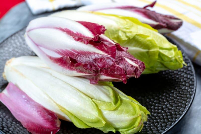 Группа в составе свежие зеленые бельгийский эндивий или цикорий и красные овощи Radicchio, также известная как salade witlof стоковое фото