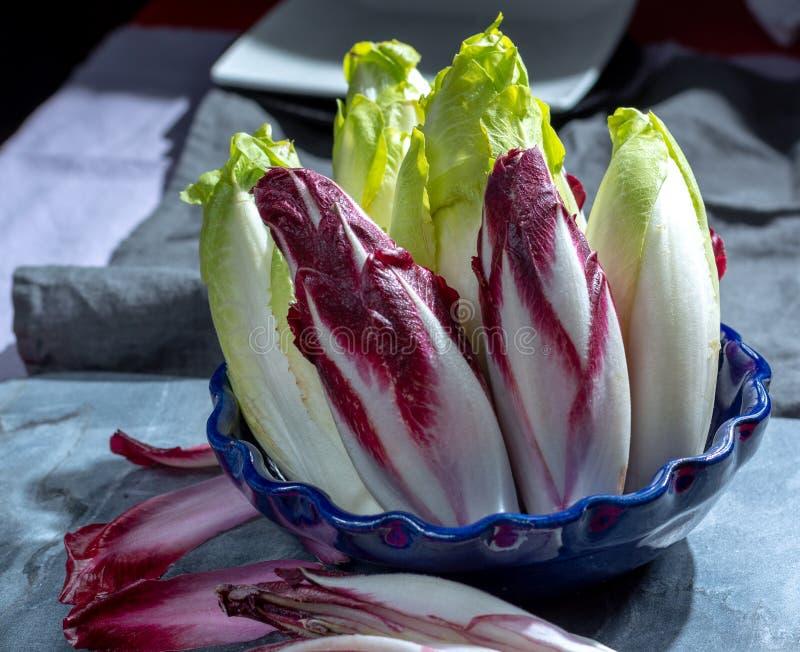 Группа в составе свежие зеленые бельгийский эндивий или цикорий и красные овощи Radicchio, также известная как salade witlof стоковое фото rf