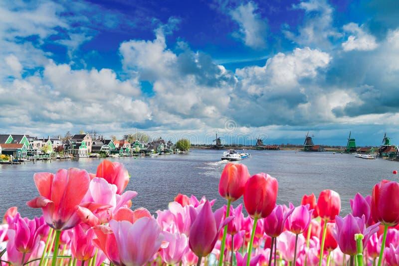 Голландские станы ветра стоковое фото rf