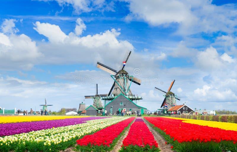 Голландские станы ветра стоковая фотография rf