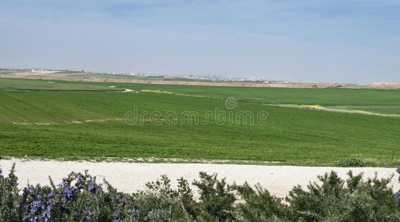 Город Газа от западного Negev в Израиле стоковое фото