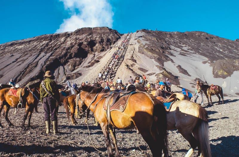 Естественная красота держателя Bromo кратера в Индонезии стоковые фото
