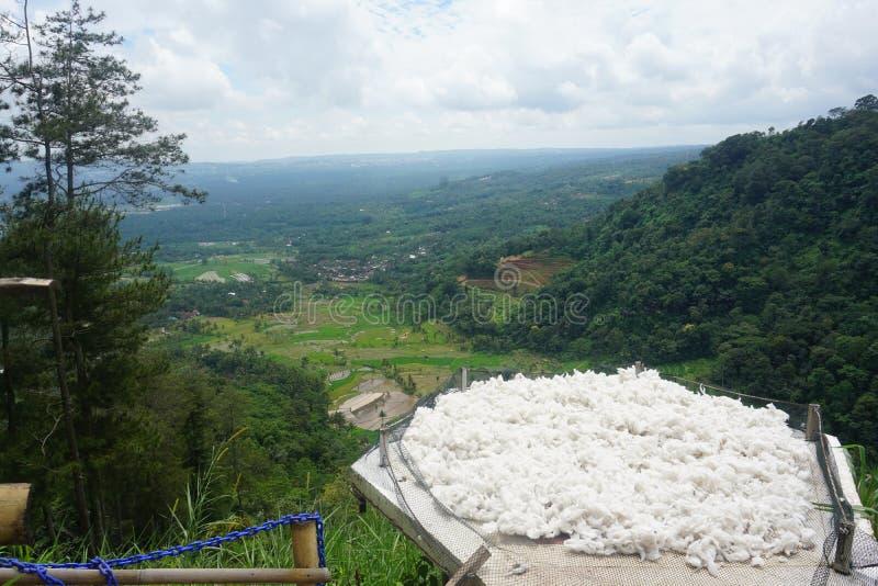 естественный пейзаж от белого расслабляющего пятна стоковые фото