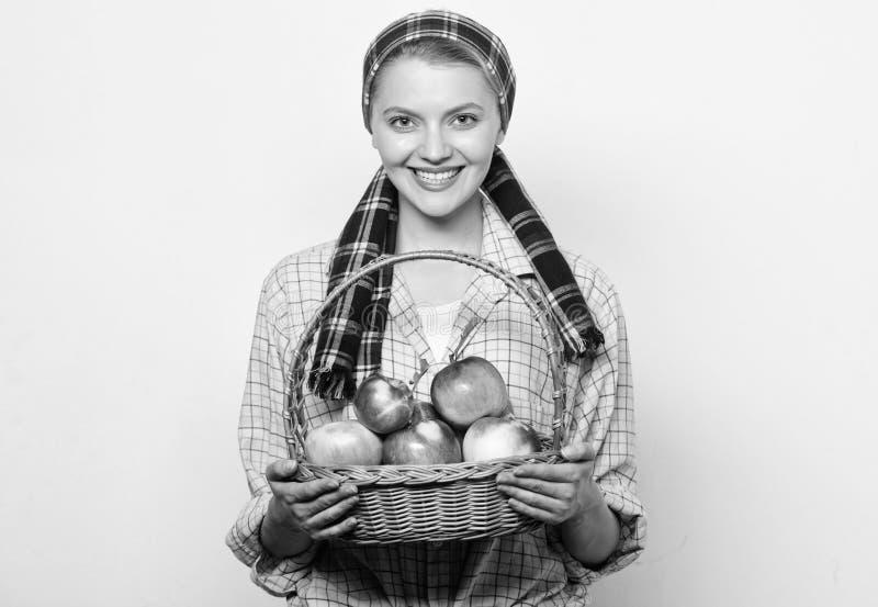 Женщина жизнерадостная носит корзину с естественными плодоовощами Корзина владением стиля садовника женщины деревенская с яблокам стоковое изображение