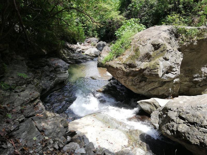 Заводь падений Agbalala, в горы Mindoro стоковое фото