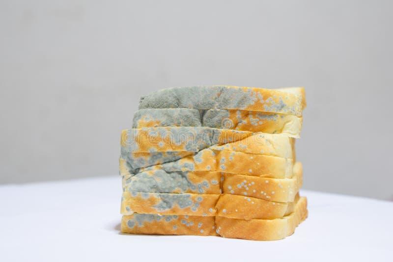 Закройте вверх moldy хлеба на белой предпосылке, терял силу не смогите съесть больше потому что вредно к здоровью стоковое фото
