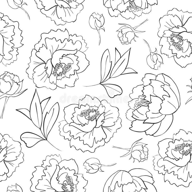 Законспектированная картина цветка, бутонов и листьев пиона иллюстрация штока