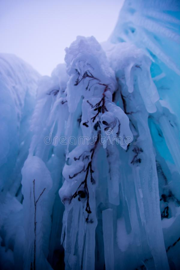 замороженный вал стоковое фото rf