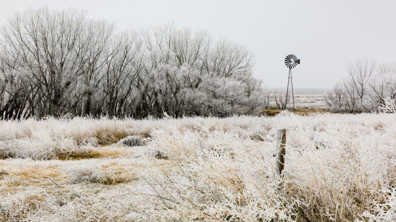 Замороженный ветер стоковое изображение