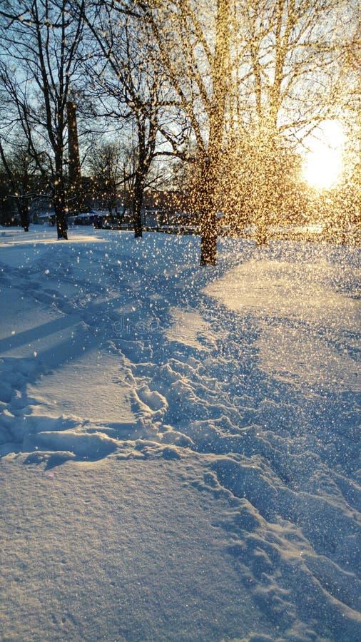 Заход солнца зимой stock photos