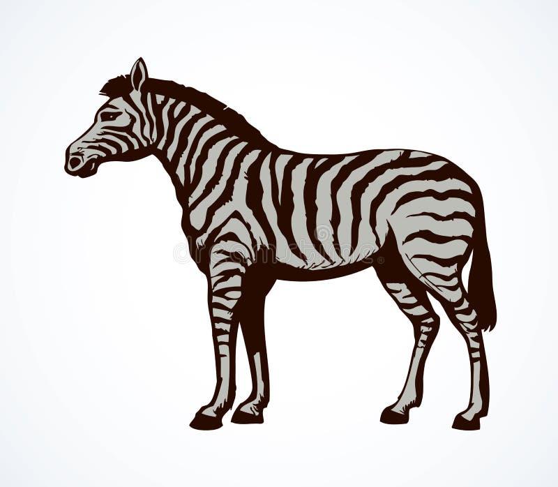Зебра предпосылка рисуя флористический вектор травы иллюстрация вектора