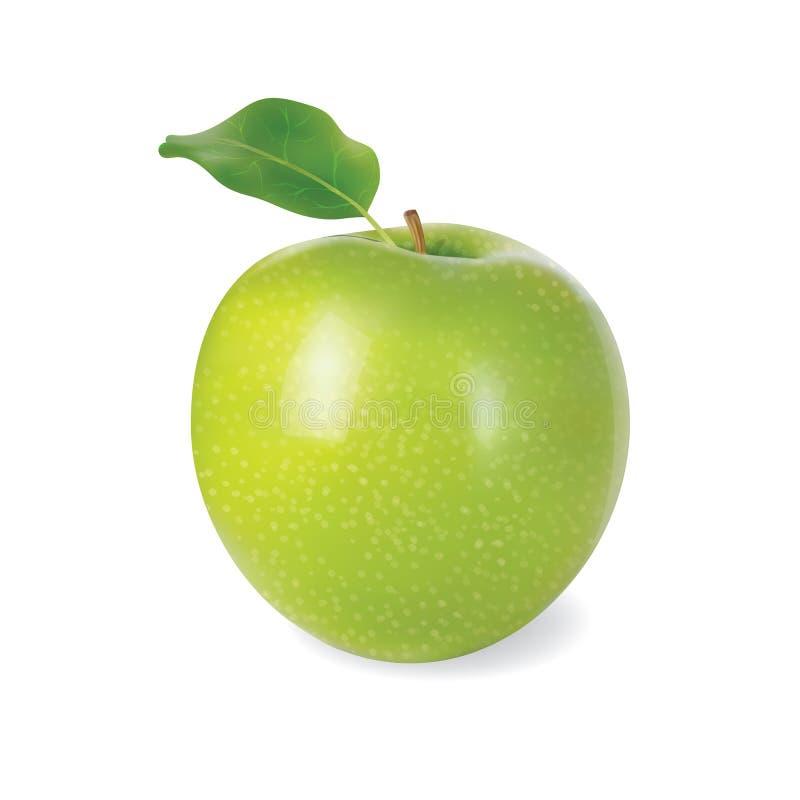 Зеленое яблоко вегетарианско еда Плод для healthe и диеты Детальная иллюстрация вектора запаса в реалистическом стиле бесплатная иллюстрация