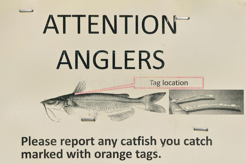 Знак для рыболова рыболова которое улавливает сома стоковая фотография