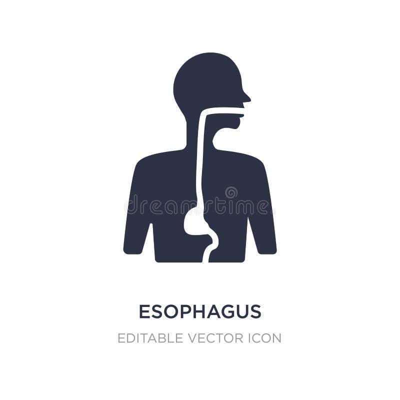 значок esophagus на белой предпосылке Простая иллюстрация элемента от медицинской концепции иллюстрация вектора