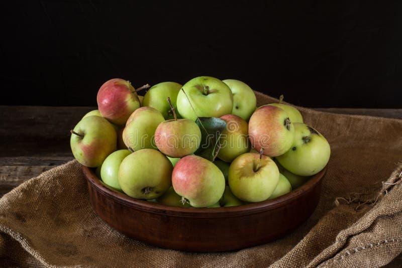 Зрелые красные и зеленые яблоки на деревянной предпосылке Яблоки в шаре Плодоовощи сада Плодоовощи осени Сбор осени стоковое изображение