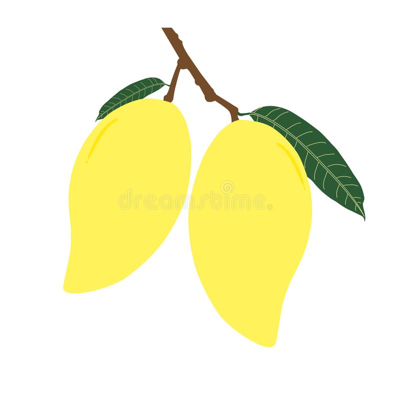 2 зрелые манго и лист с ветвью стоковое изображение rf