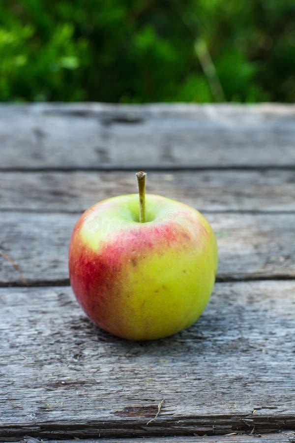 Зрелое красное и желтое яблоко на деревянном столе Яблоко в саде Вегетарианская принципиальная схема Еда натюрморта сбора осени стоковая фотография rf