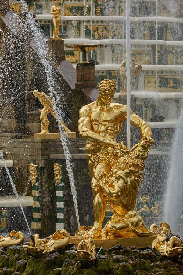 Золотая статуя на садах Peterhof, близко к Санкт-Петербургу в России стоковая фотография rf