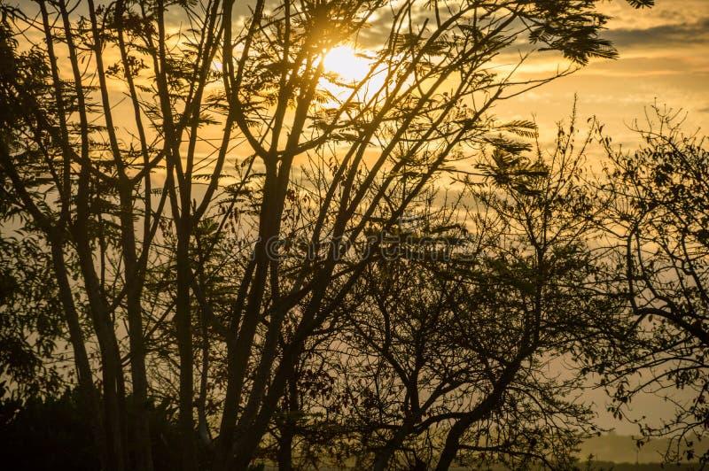 Золотой заход солнца в заливе Бали Benoa стоковое фото