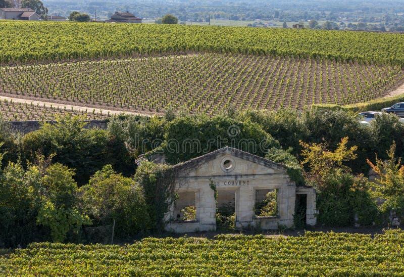 Известные французские виноградники на городке Emilion Святого около Бордо, Франции стоковая фотография