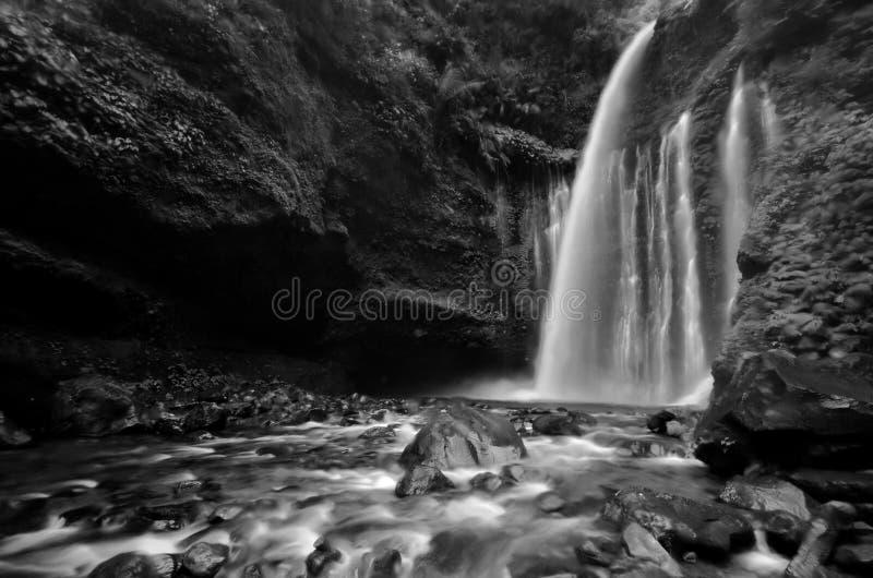 Изумляя водопад Tiu Kelep изящного искусства черно-белый около Rinjani, Senaru Lombok Индонезии стоковое изображение