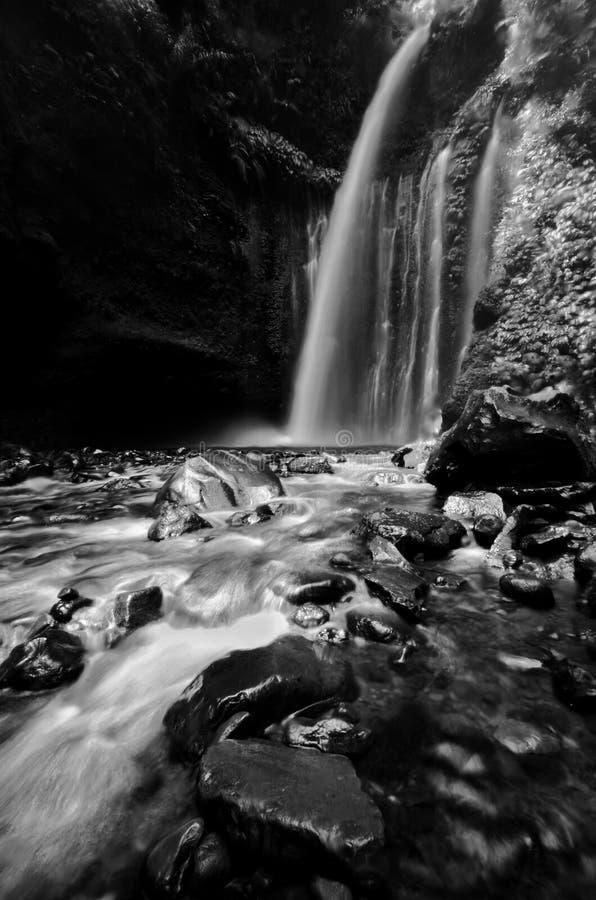 Изумляя водопад Tiu Kelep изящного искусства черно-белый около Rinjani, Senaru Lombok Индонезии Юго-Восточная Азия стоковые изображения