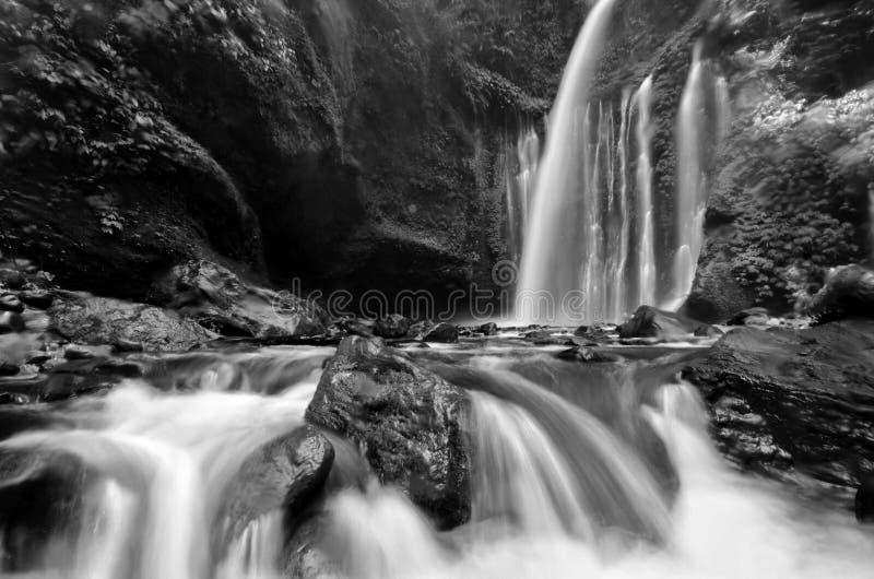 Изумляя водопад Tiu Kelep изящного искусства черно-белый около Rinjani, Senaru Lombok Индонезии Юго-Восточная Азия стоковые фото
