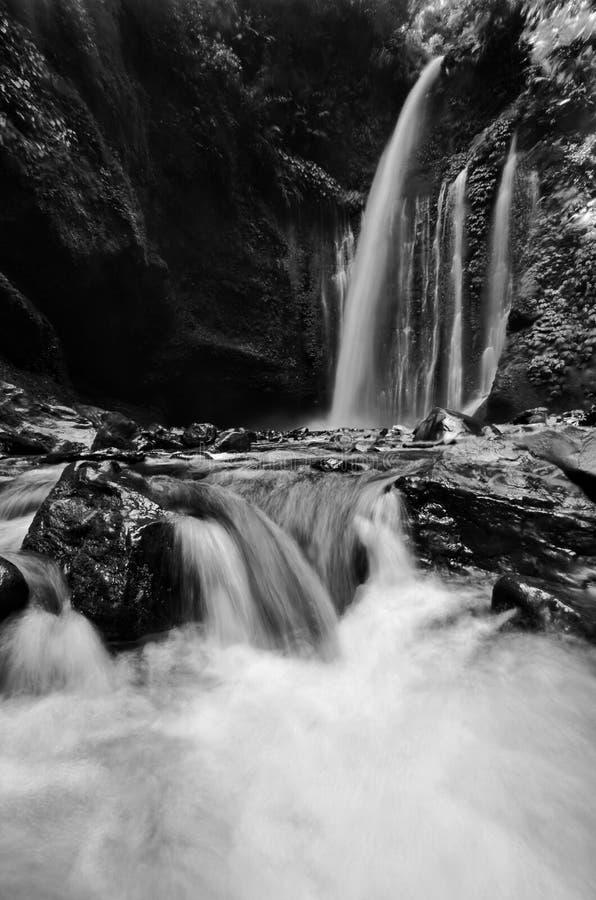 Изумляя водопад Tiu Kelep изящного искусства черно-белый около Rinjani, Senaru Lombok Индонезии Юго-Восточная Азия стоковые изображения rf