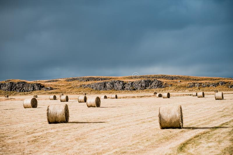 Изумляя нордический ландшафт, Исландия Стога сена на поле Идилличная долина с горизонтом гор стоковое фото